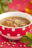 Traditional Bulgarian Lentil Soup Royalty Free Stock Images