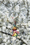 Traditional bulgarian martenitsa on a blooming spring tree Stock Photography
