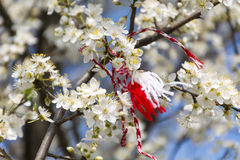 Traditional bulgarian martenitsa on a blooming tree Royalty Free Stock Images