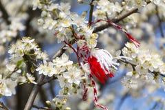 Traditional bulgarian martenitsa on a blooming tree. Martenitsa, Pizho and Penda.bulgarian spring custom Royalty Free Stock Images