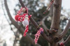Traditional Bulgarian martenitsa. Traditional bulgarian spring talisman - handmade red and white woolen bracelet `martenitsa` hanging on a tree Stock Images