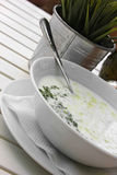 Traditional bulgarian milk soup with cucumbers Royalty Free Stock Photography