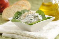 Traditional Bulgarian Salad Snezhanka Stock Photography