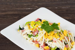 Traditional Bulgarian Shepherd salad with tomatoes, peppers, cucumbers, mushrooms, ham, cheese and eggs in white dish. Royalty Free Stock Photography