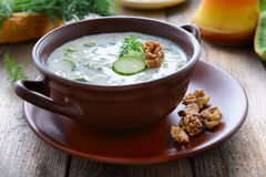 Traditional bulgarian summer cold soup with cucumbers and yogurt Royalty Free Stock Photography