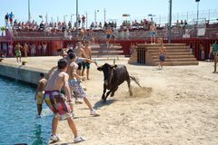 Traditional bull party in Javea, Spain Stock Photography