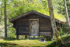 Traditional cabin in the forest with grass on the roof Royalty Free Stock Images