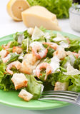 Traditional Caesar Salad with Shrimps Royalty Free Stock Photo