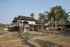 Traditional Cambodian wooden houses. Kampot, Cambodia Stock Image