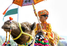 Traditional camel decoration competition at camel mela in Pushka Royalty Free Stock Photo