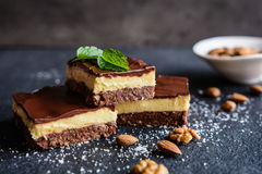Traditional Canadian Nanaimo bars Stock Image