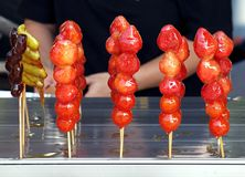 Traditional Candied Fruits Skewers Stock Images