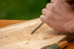 Traditional carpenter close up working hands with carpeting tools. Traditional carpenter close up working hands with carpeting tools carving wood royalty free stock photo
