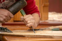 Traditional carpenter close up working hands with carpeting tools. stock photo