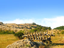 Traditional Carriage on Rural Landscapes Royalty Free Stock Photos