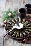 Traditional Caucasian dishes (Dolma), stuffed grape leaves with meat Royalty Free Stock Photos