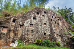 Traditional cave graves carved in the rock at Lemo. Tana Toraja, South Sulawesi, Indonesia stock image
