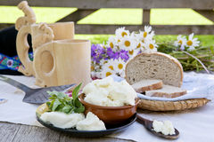 Traditional cheese. stock images