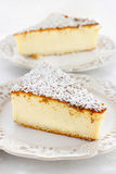 Traditional cheesecake Royalty Free Stock Images