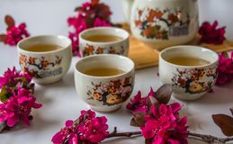 Traditional cherry blossom decorated Japanese tea set filled with green tea and fresh red cheery blossom. Against white marble background. Copy space,  healthy stock photos