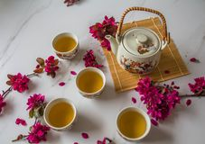 Traditional cherry blossom decorated Japanese tea set filled with green tea and fresh red cheery blossom. Against white marble background. Copy space,  healthy stock images