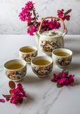 Traditional Japanese tea set filled with green tea and fresh red cheery blossom against white marble back. Traditional cherry blossom decorated Japanese tea set stock images
