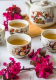 Traditional cherry blossom decorated Japanese tea set filled with green tea and fresh red cheery blossom. Against white marble background. Copy space,  healthy stock image
