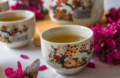 Traditional cherry blossom decorated Japanese tea set filled with green tea and fresh red cheery blossom. Against white marble background. Copy space,  healthy royalty free stock image