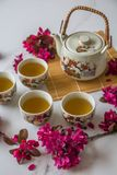Traditional cherry blossom decorated Japanese tea set filled with green tea and fresh red cheery blossom. Against white marble background. Copy space,  healthy royalty free stock photos