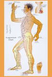Traditional Chinese Acupuncture Chart. Acupuncture Chart - Acupuncture is a system of complementary medicine that involves pricking the skin with needles, used