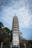 Traditional Chinese Buddhism Tower of nanputuo temple Royalty Free Stock Photography