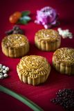 Traditional chinese festive mooncake pastry dessert. Gourmet traditional chinese festive mooncake pastry dessert Royalty Free Stock Images