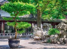 Traditional Chinese garden with rocks and trees at Yu Gardens, Shanghai, China.  royalty free stock photos