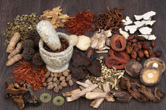 Traditional Chinese Herbal Medicine Royalty Free Stock Photos