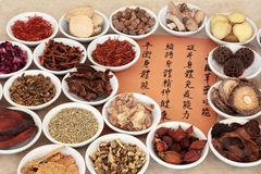 Traditional Chinese Herbal Medicine Royalty Free Stock Images