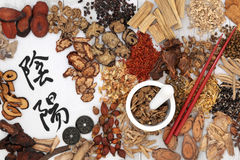 Traditional Chinese Herbal Medicine Stock Photo