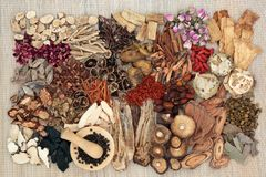 Free Traditional Chinese Herbs Royalty Free Stock Photo - 117897325