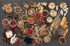 Traditional Chinese Herbs. Large selection of traditional chinese herbs used in alternative herbal medicine in wooden bowls and loose. Top view Royalty Free Stock Photo