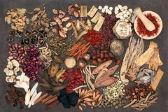 Traditional Chinese Herbs Royalty Free Stock Image