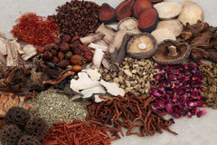 Traditional Chinese Herbs. Used in alternative herbal medicine Stock Photography