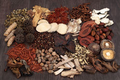 Traditional Chinese Herbs. Used in alternative herbal medicine selection on oak background Stock Images