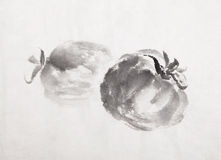 Traditional Chinese Ink and wash painting Stock Photos