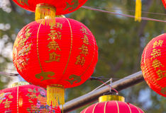 Traditional Chinese lantern hanging on tree in public park Stock Photography