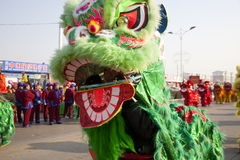 Traditional Chinese lion dancing Royalty Free Stock Images