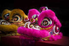 Traditional chinese lion dancing for celebration chinese new year Stock Photos