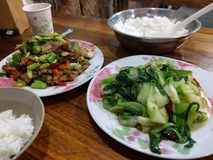 Chinese meal with vegetables, meat and rice. royalty free stock photography