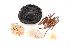 Traditional Chinese Medicine. Is based on the Chinese medical theory, for the prevention and treatment of human diseases of plants, animals, minerals and their Royalty Free Stock Image