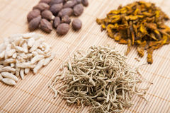 Traditional Chinese medicine. And herbs Stock Images