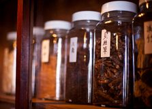 Traditional chinese medicine herbs Royalty Free Stock Photo