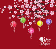 Traditional chinese new year. Blossom and lantern background. Year of the dog.  Stock Photos